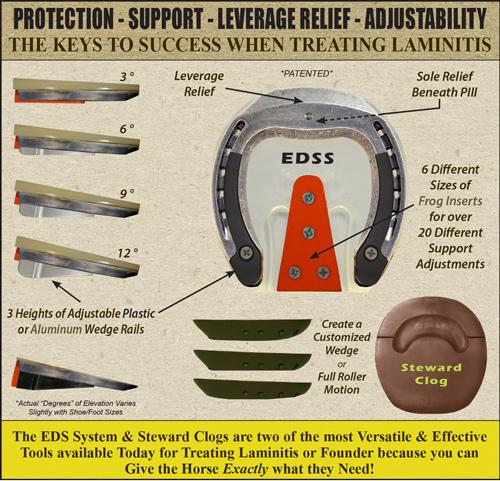 edss-clog-versatilead.jpg